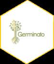 Germinato