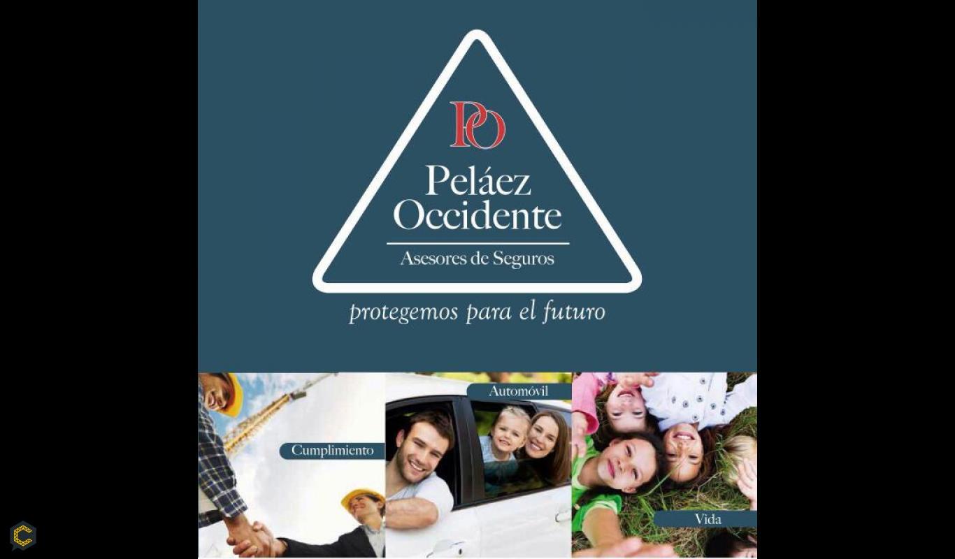 Pólizas de cumplimiento para contratos públicos y privados