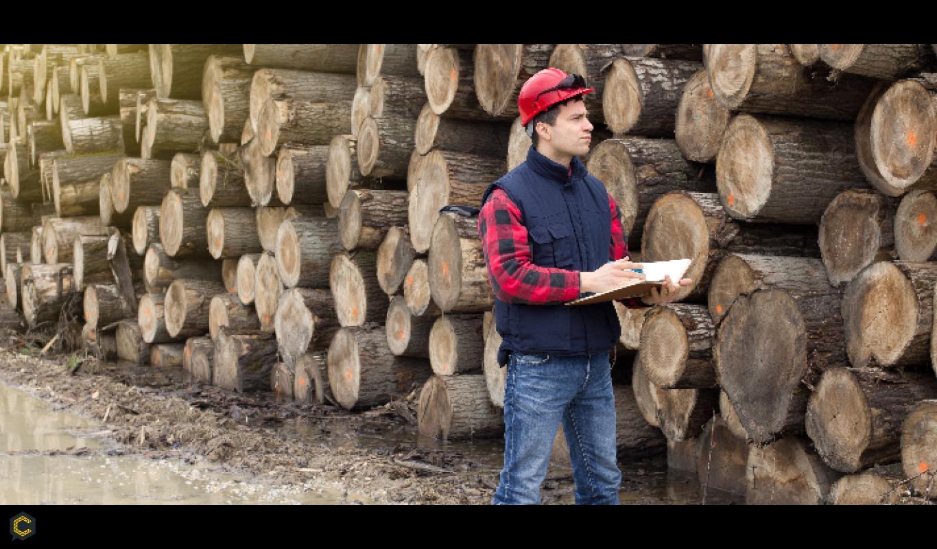 Empresa de consultoría requiere 2 ingenieros forestales