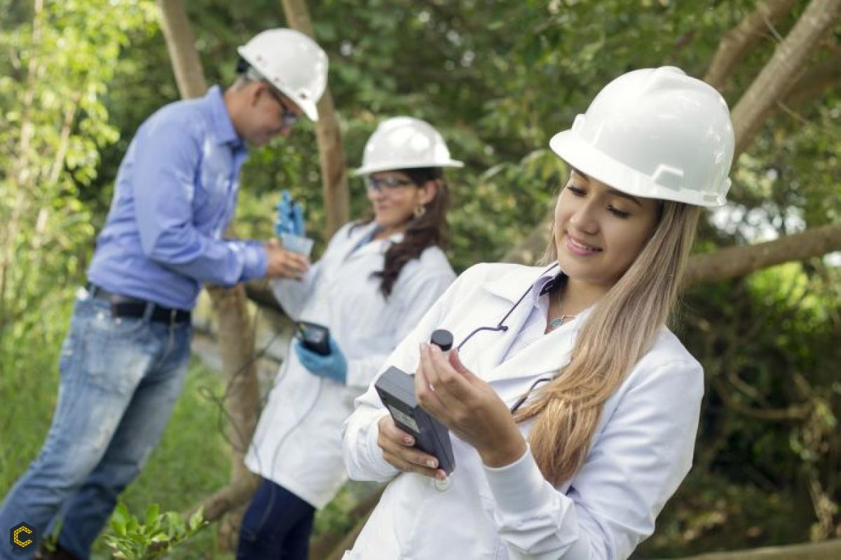 Se requiere profesional ambiental, forestal o afines