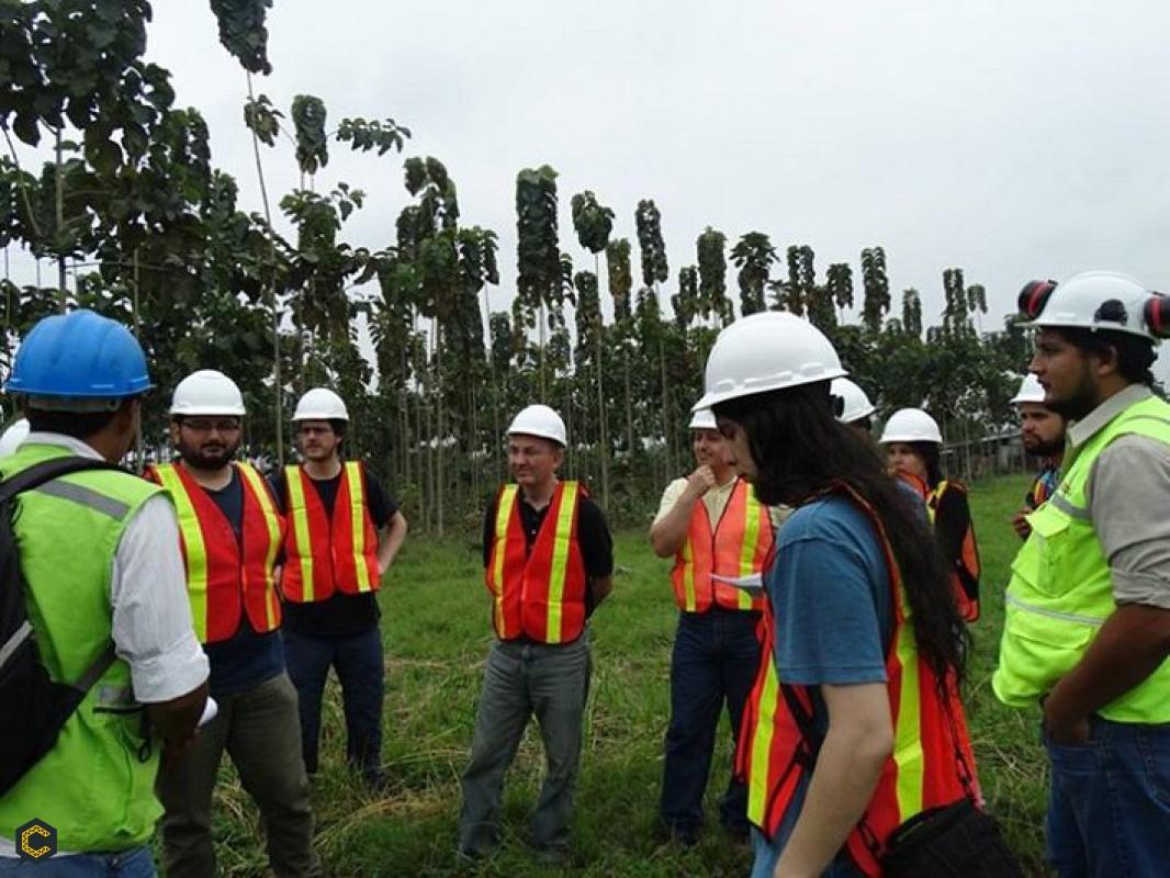 Se requiere ing Forestales, Ambientales y profesionales sociales, especialistas en sistemas de información geográfica (SIG)