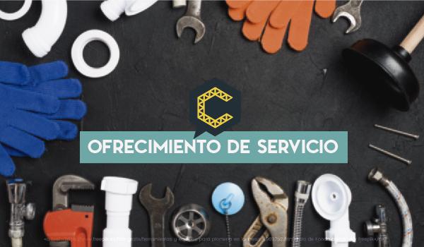 Servicios de consultoria en sistemas de gestión