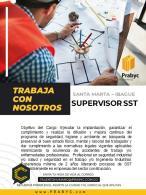 supervisor(a) de seguridad y salud en el trabajo