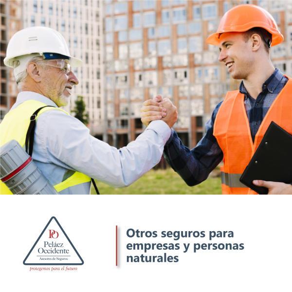Otros seguros para empresas y para personas tales como