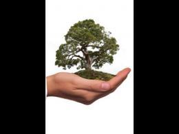 Sostenibilidad ambiental corporativa /curso